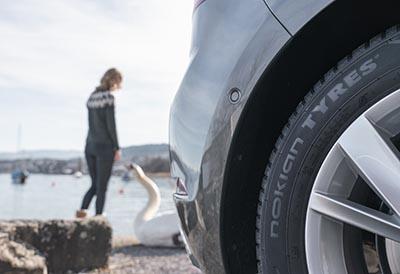 Neumáticos cuatro estaciones por su comodidad y seguridad todo el año